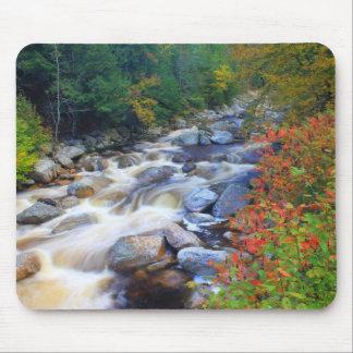 Autumn River Big Branch Wilderness Vermont Mousepads