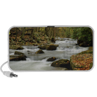 Autumn River Scene Notebook Speakers