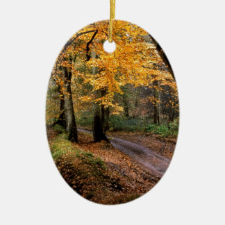 Autumn Road Less Traveled Christmas Ornament