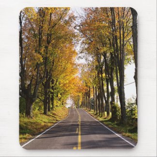 Autumn Road Mouse Pad