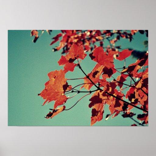 Autumn Rush Print