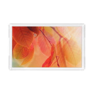 Autumn Scene 2 Acrylic Tray