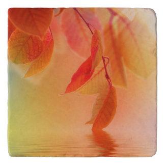 Autumn Scene 2 Trivet