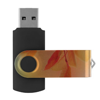 Autumn Scene 2 USB Flash Drive