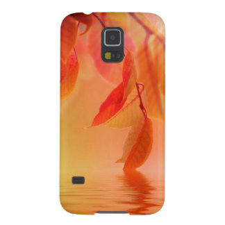 Autumn Scene Galaxy S5 Covers