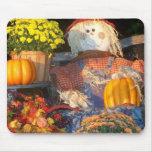 Autumn Scene Mousemats