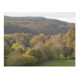 Autumn scene wicklow,Ireland Postcard