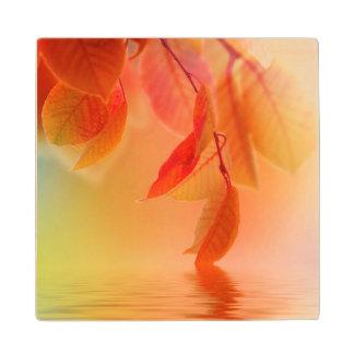 Autumn Scene Wood Coaster