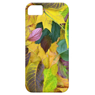 autumn season tree leaf texture pattern background iPhone 5 cover