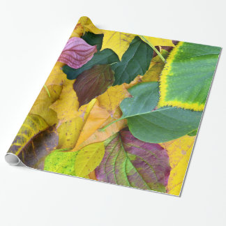 autumn season tree leaf texture pattern background wrapping paper