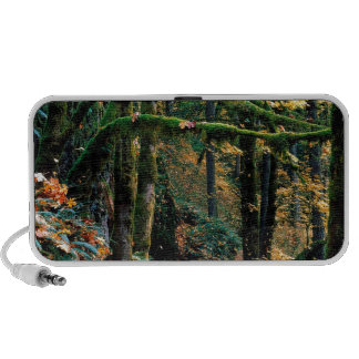 Autumn Silver State Park Oregon iPod Speaker