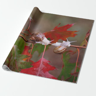 Autumn snails wrappingpaper