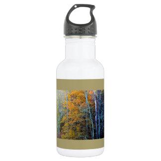 Autumn Splendor 18 oz Water Bottle 532 Ml Water Bottle