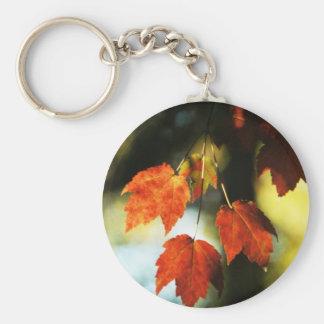 Autumn Splendor Basic Round Button Key Ring
