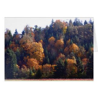 Autumn Splendor Note Card