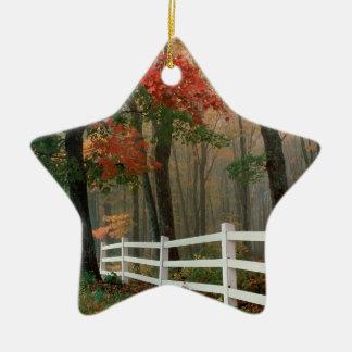 Autumn Splendor Ceramic Star Decoration