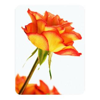 Autumn Splendor Fire Rose Flower Invitation Card