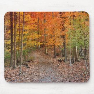 Autumn Splendor Mouse Pad
