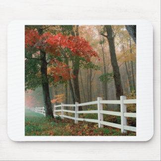 Autumn Splendor Mouse Pads