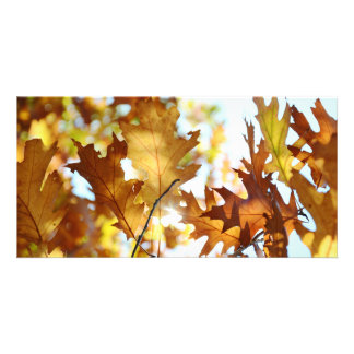 Autumn Splendor Photo Card