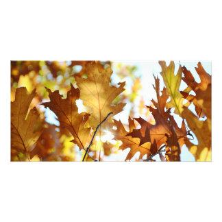 Autumn Splendor Photo Card Template