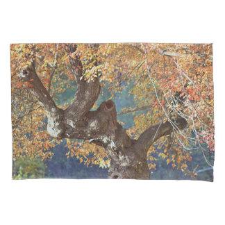 Autumn splendor pillowcase