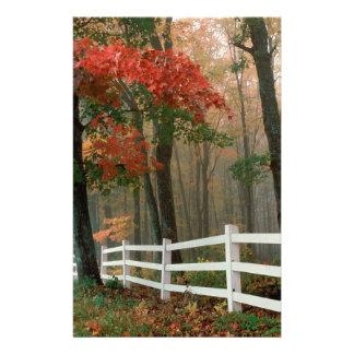 Autumn Splendor Custom Stationery
