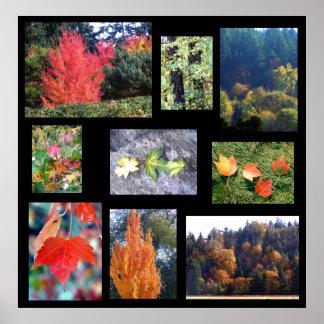 Autumn Splendors Poster
