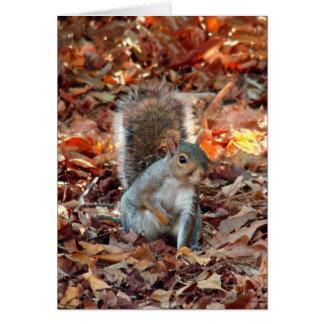 Autumn Squirrel Card