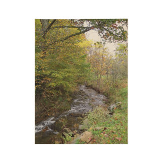 Autumn Stream wood poster