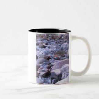 Autumn streams Two-Tone mug