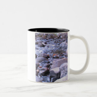 Autumn streams Two-Tone mug