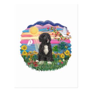 Autumn Sun-Portuguese Water Dog (bw) Postcard