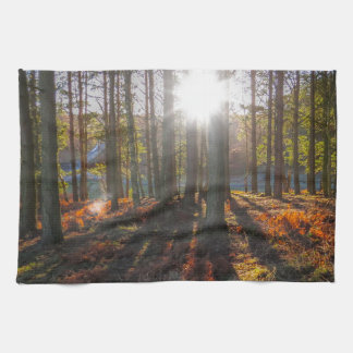 Autumn Sun Tea Towel