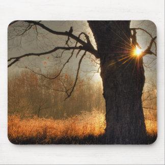 Autumn Sunrise Mouse Pad