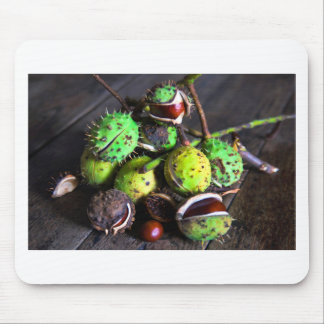 Autumn tendency with Kastanien Mouse Pad