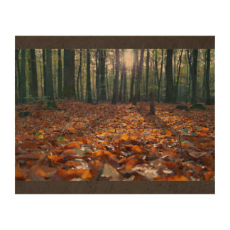 Autumn Themed, A Bed Of Golden Leaves In The Fores Queork Photo Print