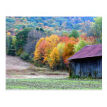 Autumn Tobacco Barn Nature Photography Postcard