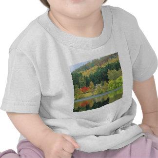 Autumn Tranquil Waters Loch Of Eileen Scotland T-shirt