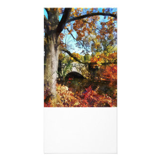 Autumn Tree by Small Stone Bridge Custom Photo Card