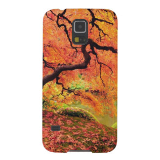 Autumn Tree Cases For Galaxy S5