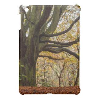 Autumn Tree Cover For The iPad Mini