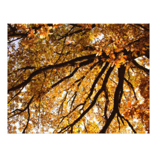 Autumn tree custom flyer