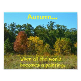Autumn Tree Image Photograph