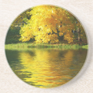Autumn tree in the forest with reflection coaster