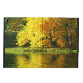 Autumn tree in the forest with reflection iPad air case