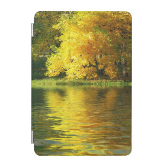 Autumn tree in the forest with reflection iPad mini cover
