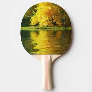 Autumn tree in the forest with reflection ping pong paddle