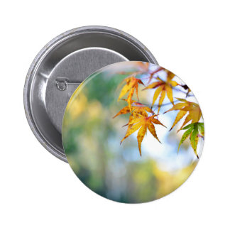 autumn tree leaf nature abstract detail background 6 cm round badge