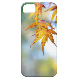 autumn tree leaf nature abstract detail background iPhone 5 covers